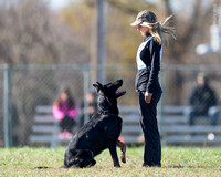 2015 Nov GSD Nationals