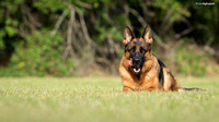 untitled  BA2_9836 Kim Akers